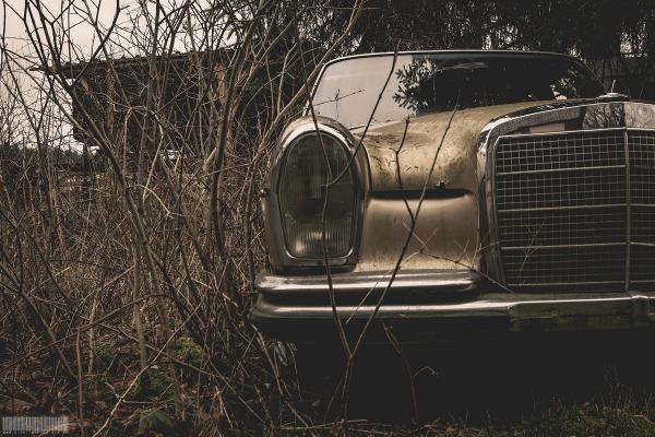 Mercedes des Armin Meiwes