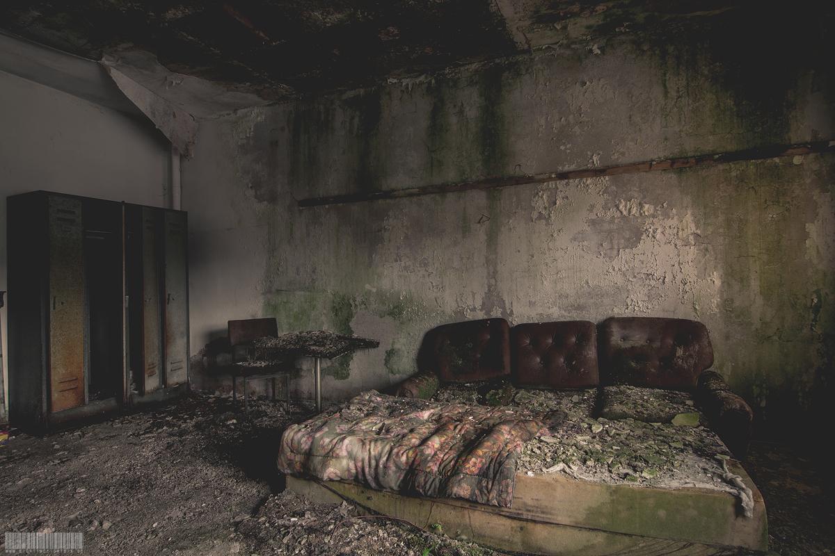 Das vermooste Sofa