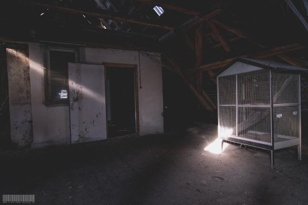 DG mit Käfig